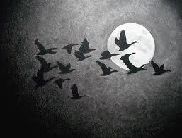 moon-and-geese